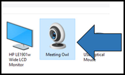 Meeting owl